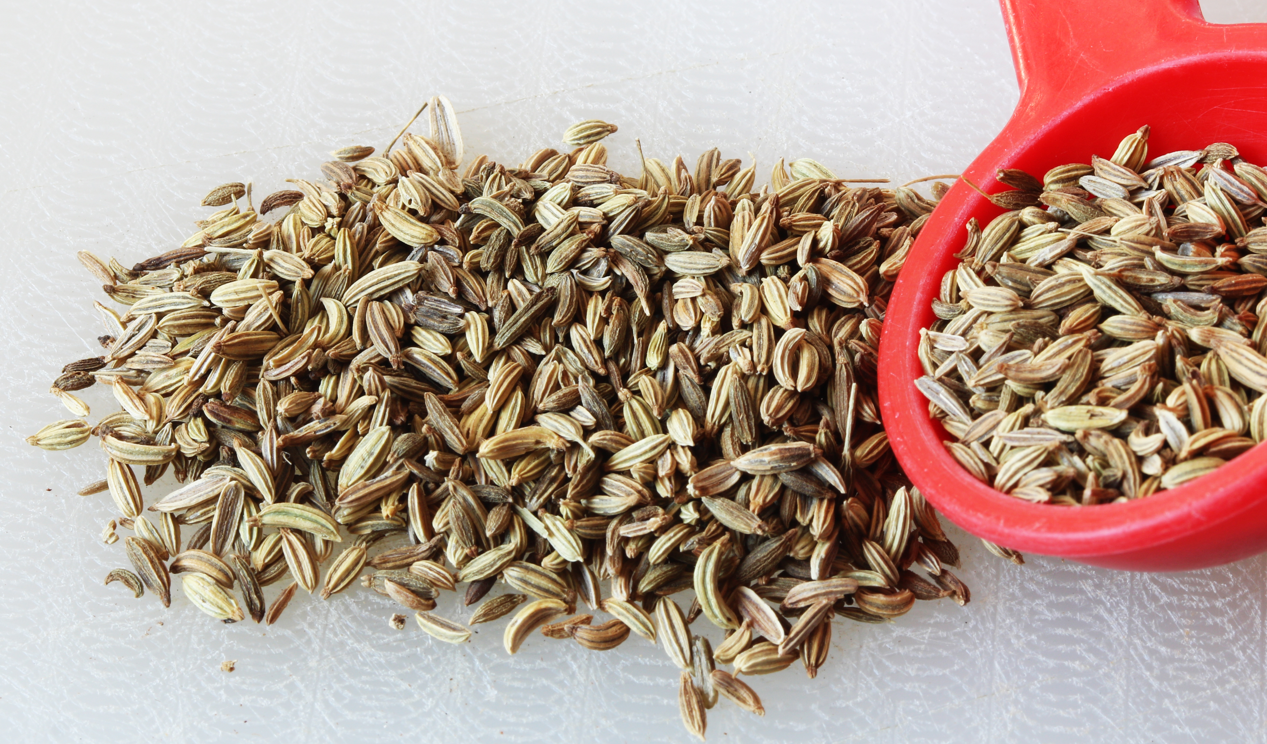 Fennel Seeds in Malay Fennel Seeds